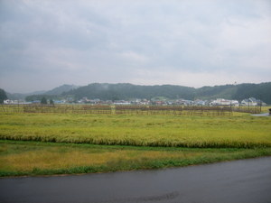 Uni_3105